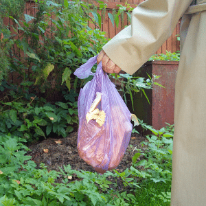 How to use Compostable Bags in Curbside Composting Bins
