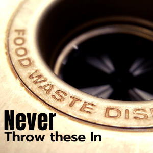 The best garbage disposal tips