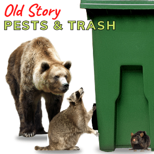 How to Prevent Pests Going After Your Trash Cans
